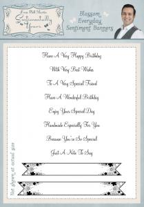 Sentimentally Yours Blossom Everyday Sentiments Banners A5 Clear Stamp Set